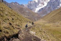 Viandanti sulla traccia nelle alte Ande Fotografia Stock