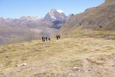 Viandanti sulla traccia nelle alte Ande Immagine Stock
