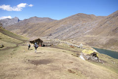 Viandanti sulla traccia nelle alte Ande, Fotografia Stock Libera da Diritti