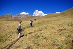 Viandanti sulla traccia nelle alte Ande Immagini Stock Libere da Diritti