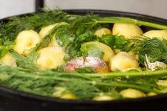 Viande avec des pommes de terre, des pommes et l'ail dans un chaudron sur le feu Image libre de droits