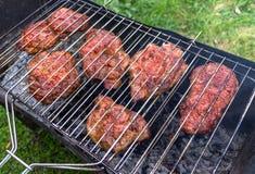 Viande, biftecks culinaires sur le feu ouvert en plein air Photos libres de droits