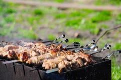 viande Chiche-kebab-grillée dehors images libres de droits