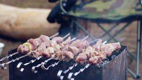 Viande crue grillant sur mangal Morceaux de viande faisant cuire sur des brochettes en métal banque de vidéos