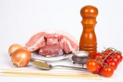 Viande crue, sel, poivre, tomates, oignon, cuillère avec des herbes, bâtons Photo stock