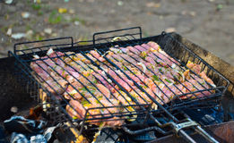 Viande de BBQ sur des charbons dehors Photo stock
