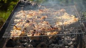 Viande de poulet frite sur un gril de barbecue banque de vidéos
