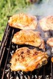 Viande de poulet sur le gril Photographie stock libre de droits