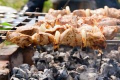 viande de rôti sur des brochettes sur le feu ouvert Image stock