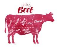 Viande de vache à coupe de diagramme Boucherie, taureau, illustration de vecteur de boeuf illustration stock