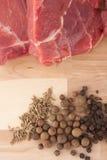 Viande et épice Photos libres de droits