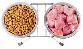 Viande et nourriture sèche pour des animaux familiers dans des cuvettes en métal Photographie stock libre de droits