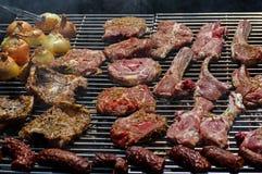 Viande et oignons sur un gril Photographie stock libre de droits