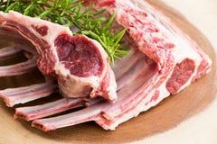 Viande fraîche Nervures d'agneau Viande crue Images stock