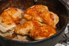 Viande frite savoureuse Viande légère de poulet image stock