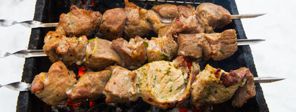Viande grillée Photographie stock libre de droits