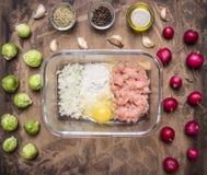 Viande hachée crue avec de la farine et des oignons dans un bol en verre avec des herbes, des pousses et le radis sur la fin rust photo stock