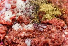 Viande hachée, oignon coupé, épice d'herbe et sel Foyer sélectif Photographie stock