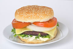 viande juteuse d'hamburger Images stock