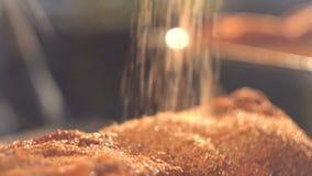 Viande marinant pour le barbecue banque de vidéos