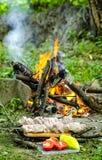 Viande pour le barbecue Photos stock