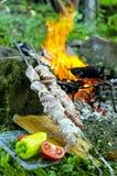 Viande pour le barbecue Images libres de droits