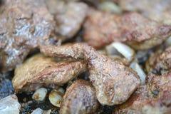 Viande rôtie mûre fraîche de boeuf à l'oignon Image libre de droits