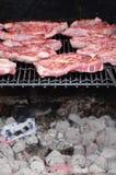 Viande sur le BBQ Photographie stock