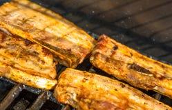 Viande sur le BBQ Photos libres de droits