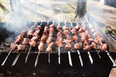 Viande sur le gril Photos libres de droits