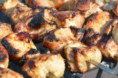 Viande sur le gril Image stock