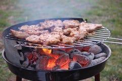 Viande sur le gril Photo stock