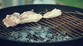 Viande sur un gril rond, porc, veau, agneau, barbecue dans le pays banque de vidéos