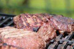 Viandes grillées mélangées Photographie stock