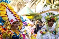 Viareggio的狂欢节 库存图片