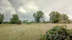 Viareggio. Italy cloudy royalty free stock photography