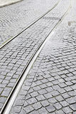 Vias of a tram in the city Stock Photography