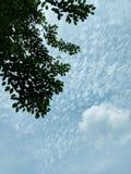 Vibrações da nuvem fotografia de stock royalty free