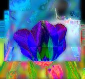 Vibrant abstract indigo tulip head stock illustration
