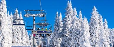 Vibrant active people winter image with skiers on ski lift, snow pine trees, blue sky. Vibrant active people winter image with skiers sitting on the ski lift Stock Photos