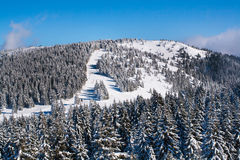 Vibrant aerial panorama of the slope at ski resort, people skiing, snow trees, blue sky. Vibrant aerial view panorama of the slope at ski resort, people skiing Royalty Free Stock Photo
