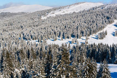 Vibrant aerial panorama of the slope at ski resort, people skiing, snow trees, blue sky. Aerial view panorama of the slope at ski resort, people skiing, snowy Royalty Free Stock Photos