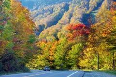 Vibrant autumn colors in Vermont, US. Vibrant autumn colors see from highway in Vermont, US Stock Images