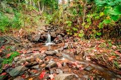 Free Vibrant Autumn Marquette Nature Stream Landscape Stock Photo - 102591700