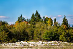 Vibrant autumn panorama background with colorful Royalty Free Stock Images