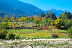 Vibrant autumn panorama background with colorful green, red, yellow trees and old farm fence Stock Photography