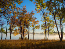 Vibrant Autumn Trees and Lake with Fog Stock Photo