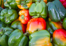 Vibrant bell peppers Stock Photo