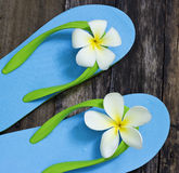 Vibrant blue sandal and flower on old table. Vibrant blue sandal on old wooden table Stock Image