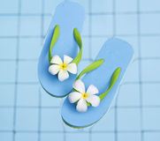 Vibrant blue sandals and flower in the water pool Royalty Free Stock Photography